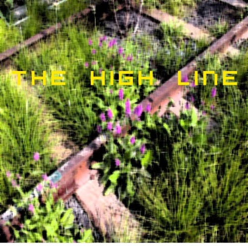 The_high_line_2_copia